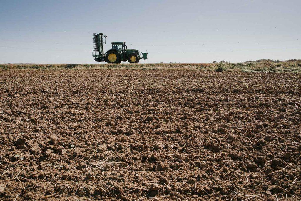 CFS Rollhacke am Feld - Rotary Hoe von Cross Farm Solution Landmaschinen