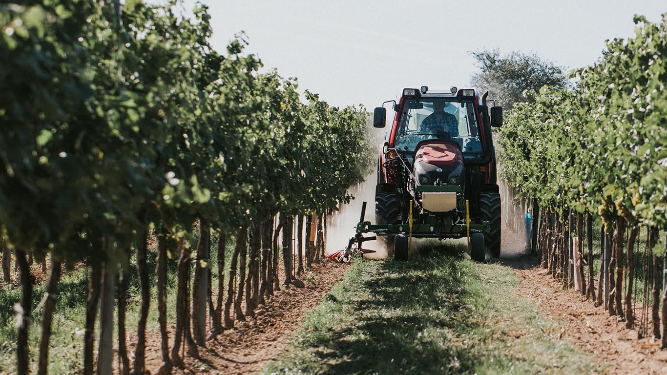 CFS Kress Fingerhacken Weinbau