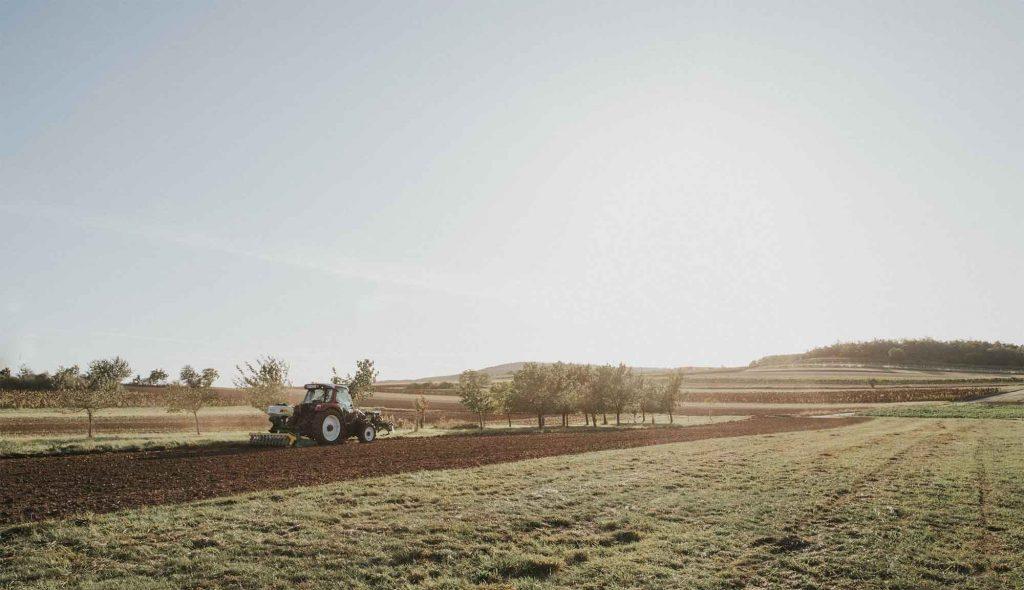 CFS Aus Leidenschaft zur Landwirtschaft