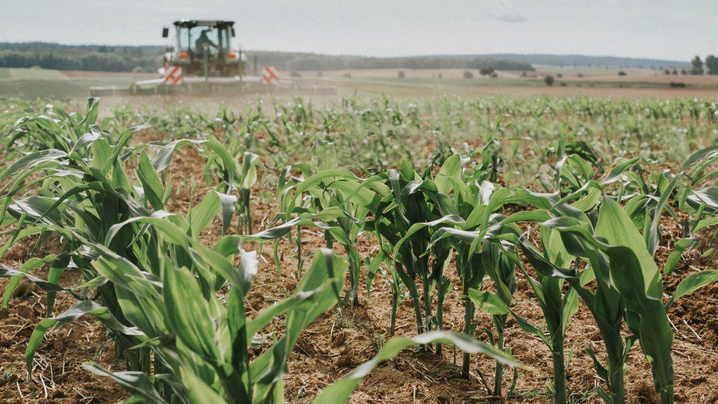 Kontakt_CFS Cross Farm Solution