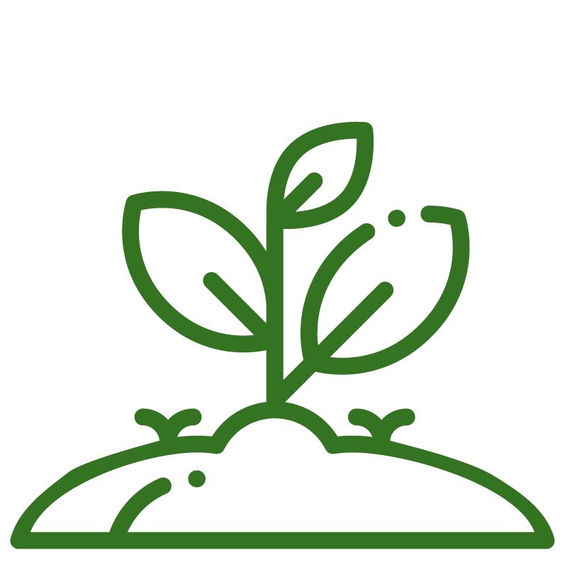 Reseeding_CFS Cross Farm Solution_ICON