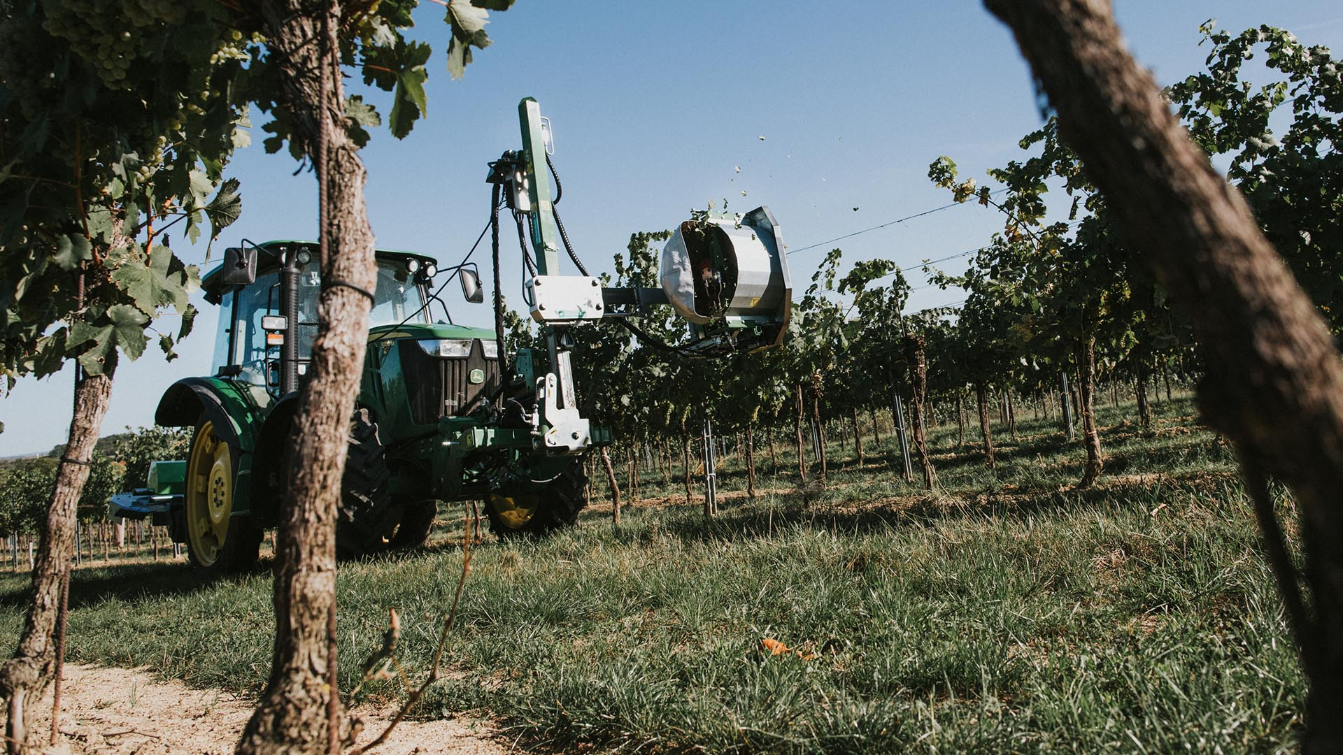 Produktbild_Entlauber_CFS Cross Farm Solution Weinrebe