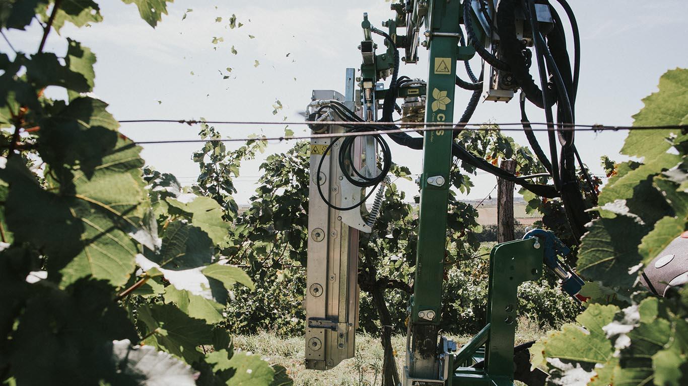 Produktbild_Laubschneider_CFS Cross Farm Solution Ueberzeile Einsatz Weingarten 2