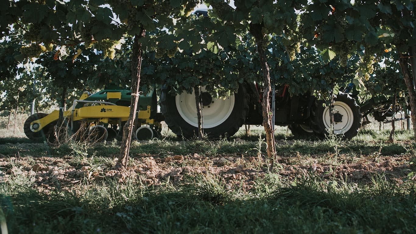 Produktbild_Reblaus_CFS Cross Farm Solution Weinbau Bearbeitung Direktsaeheinheit Einsatz