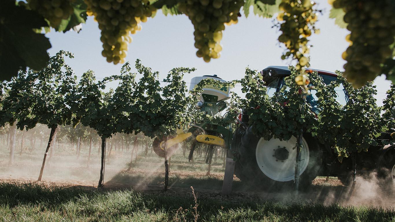 Produktbild_Rebmini Nachsaatstriegel Pneumatisches Saegeraet_CFS Cross Farm Solution Weinbau