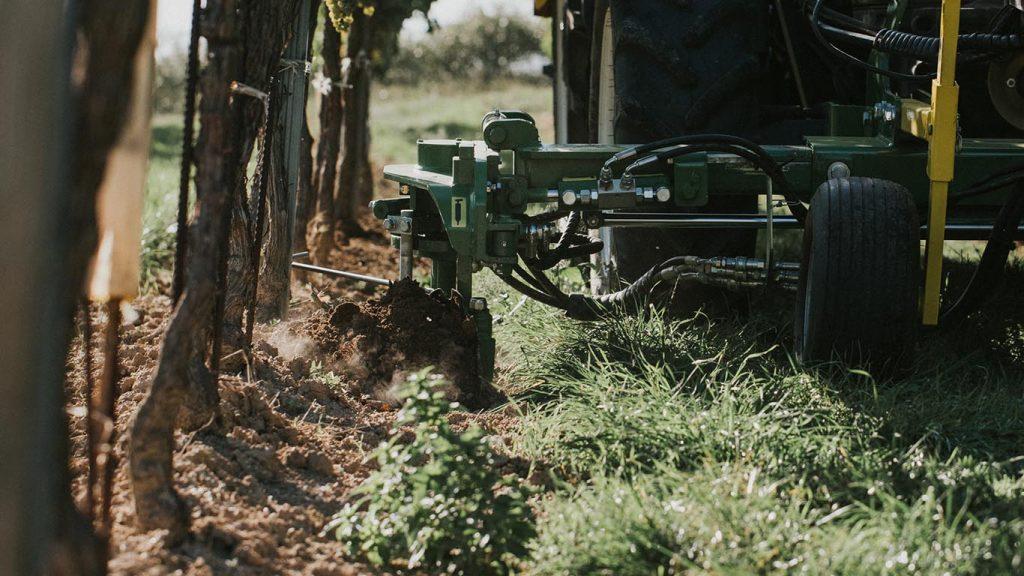 Unterstockpflege_Vinox Tasterkopf Weinbau_CFS Cross Farm Solution Weinberg